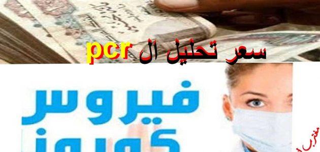 اسعار تحليل pcr في السعودية